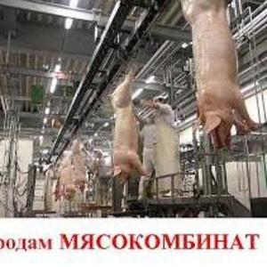 Строительство мясокомбинатов
